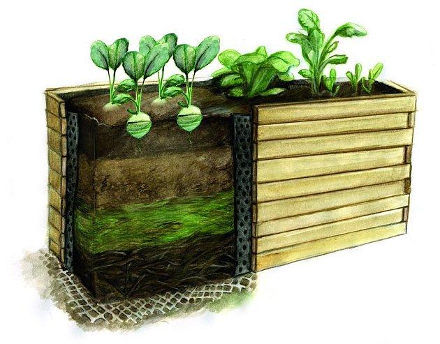 Průřez vyvýšeným záhonem. Založit ho lze i odděleně od půdy, například na dlažbě