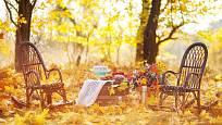 Uspořádejte si pod širým nebem oslavu padajícího listí