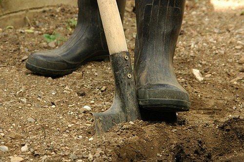 Pokud plánujete oživit a osázet zahrádku i během léta, nezapomeňte vždy zeminu pořádně prokypřit a zrýt.