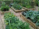 Zeleninové záhony, které se snadno udržují a krásně vypadají