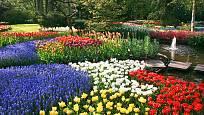 Jarní inspirace, okrasné cibuloviny v parku