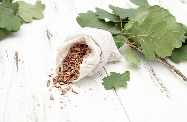 Odvar z dubové kůry, bohatý na třísloviny, pomáhá hemeroidy stahovat a hojit