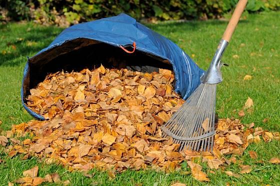 Listí se nemusíme zbavovat, můžeme z něj připravit skvělou listovku.