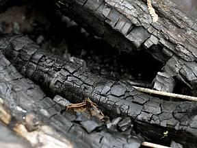 dřevěný popel