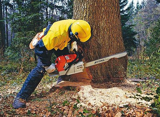 profesionální pila pro těžbu dřeva stojí i 40 000Kč