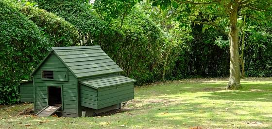 Kurník může splynout se zahradou