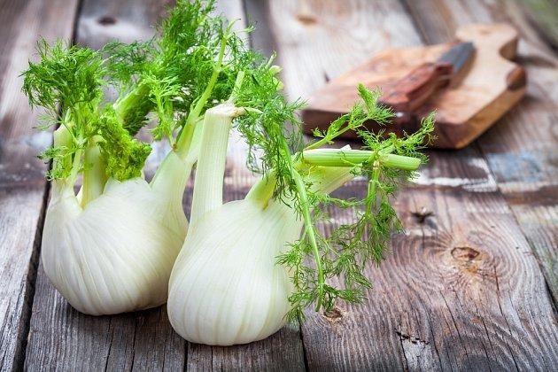 zeleninový fenykl zvaný též sladký
