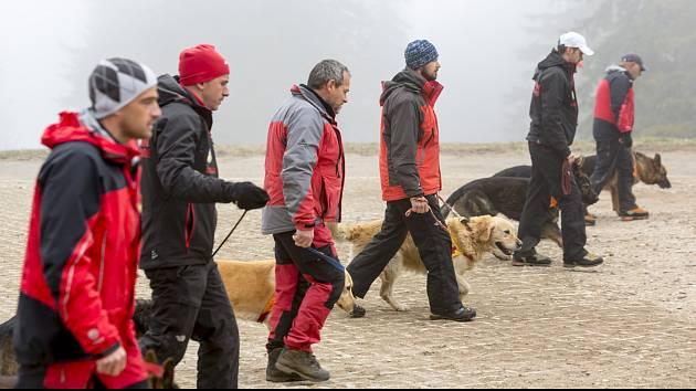 Při práci je kladen důraz na využití a podporu přirozených instinktů psa, kdy pes má jediný úkol – najít hledanou osobu.