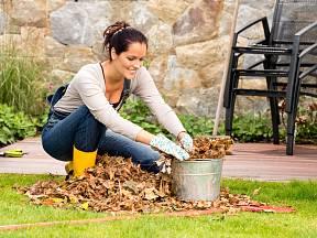 Může neshrabané listí způsobit na zahradě katastofu?