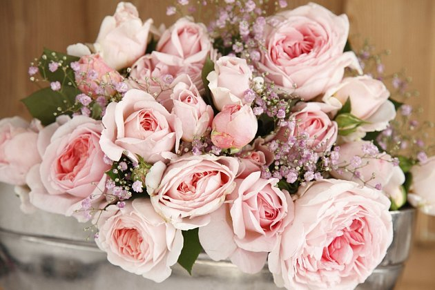 růže odrůdy Märchenzauber
