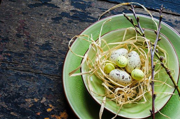 Lýko a křepelčí vajíčka - rychlá a přitom elegantní dekorace velikonoční tabule.