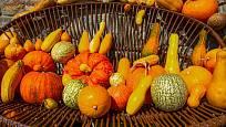 Součástí dietní stravy nemusí být nutně jen zelenina.