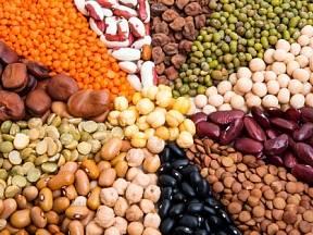 Fazole mnoha chutí, druhů i barev jsou k nezaplacení.