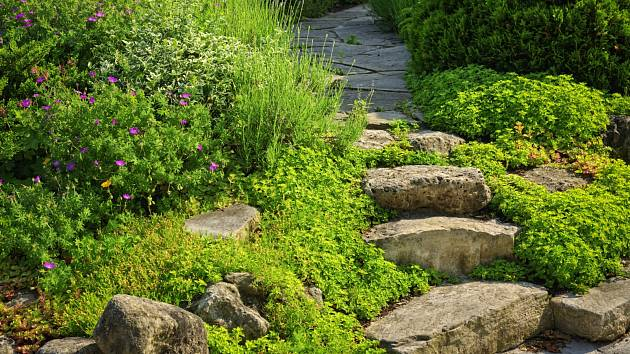 Dejte zahradě prostor a nechte chodníčky i dlažbu rozkvést.