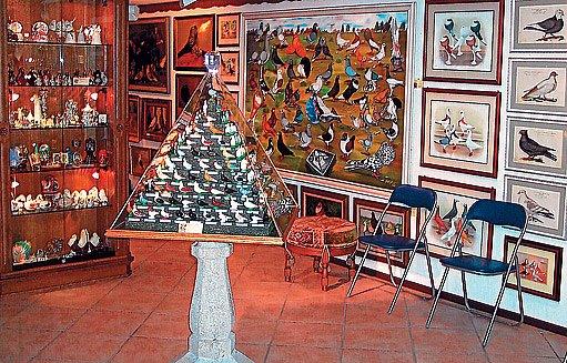 holubářské muzeum