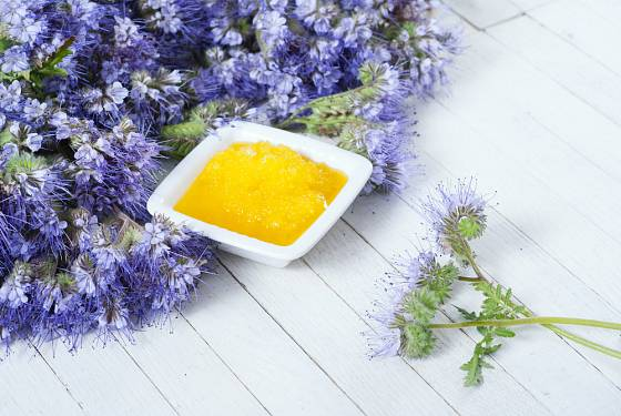 Svazenka patří mezi oblíbené medonosné byliny.