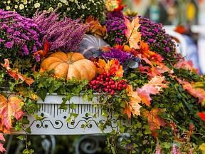 Podzim neznamená prázdné truhlíky.