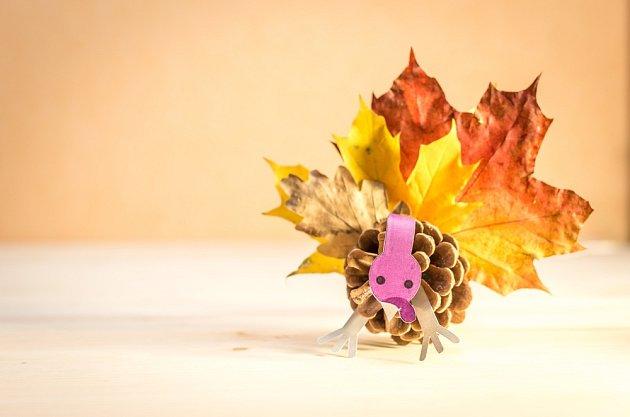 Drak ze šišky a listů