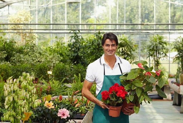 Nákup rostlin - nač si dát pozor