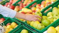 Různé odrůdy jablek mají v době zralosti charakteristickou barvu.
