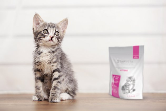 Koťata, kočky chované v bytě a kočky běhající venku potřebují odlišné krmivo. Některé značky již tento fakt reflektují.