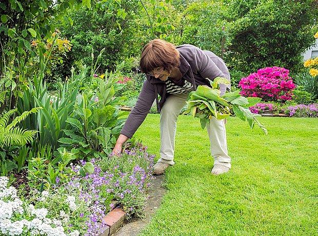 Hřbet zůstává nepoddajnou věcí, kterou se zahradník marně pokouší náležitě ohnout...