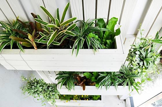 Vertikální zahrada najde své místo všude