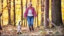 Psi jsou pro seniory skvělými parťáky nejen na lenošení u televize.