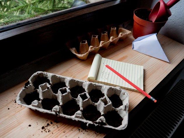 Ředkvičky můžeme vysévat i do kartonového obalu od vajec.