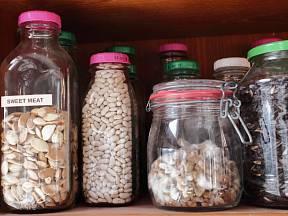 Aby si semínka uchovala klíčivost co nejdéle, skladujte je v suchu, chladu, temnu a ve stálých podmínkách.