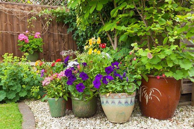 Kombinujte květináče různých barev i velikostí.