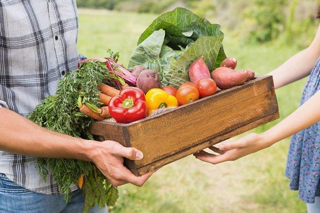 Kvalitní zeleninu seženeme na farmářských trzích nebo přímo od pěstitelů.