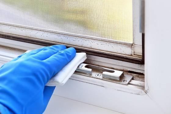 Pokud je na okně síť proti hmyzu, čistí se rámy obtížně.