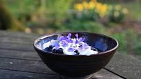 květy violky vonné na dezertu