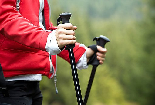 hole pro nordic walking