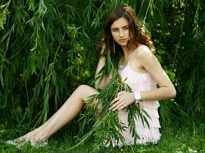 Vrbové proutí nemusíte využívat jen o Velikonocích. Lze z něj zbudovat živoucí zahradní altán