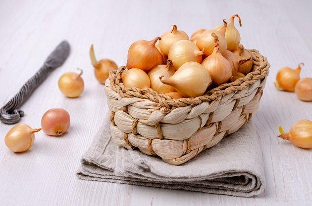 Cibule, a především ta jarní, je plná živin, antioxidantů, vitamínů a minerálů.