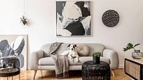 Pohodlná pohovka a dostatek volného prostoru umožní v obýváku příjemný pobyt.