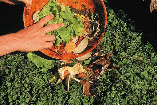 biologické zbytky z kuchyně do kompostu klidně přidejte