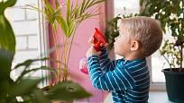 Děti často rády pomáhají s péčí o kytičky. Baví je hlavně rosení.