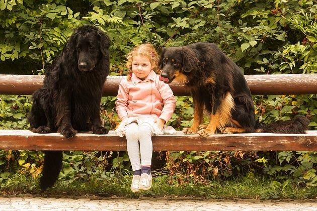 Hovawarti milují svou rodinu i děti.