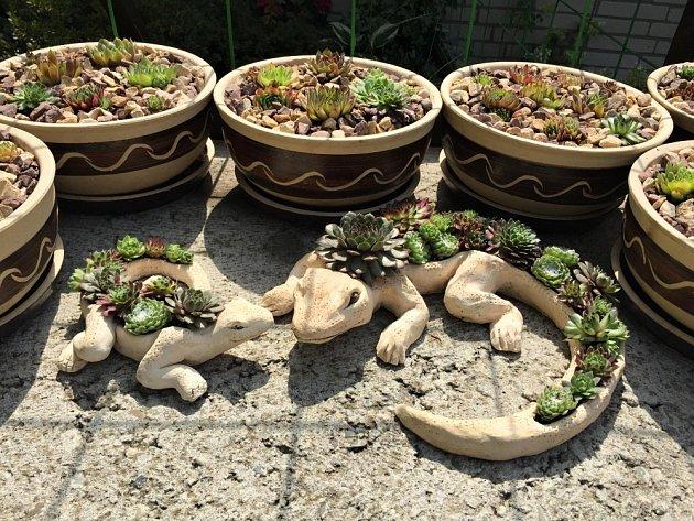Keramické ještěrky se nám vyhřívají i s netřesky na terase.