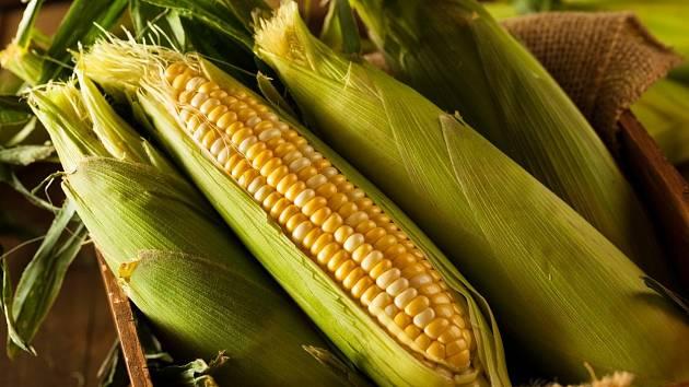 Víte, na co všechno se dají použít kukuřičné slupky?