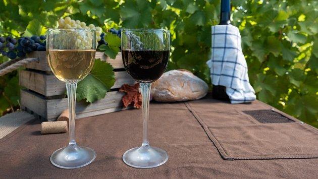 Sally Daviesová, britská lékařka, označila víno za naprosto škodlivé pro naše tělo. Tehdy se zvedla mediální vlna názorů...