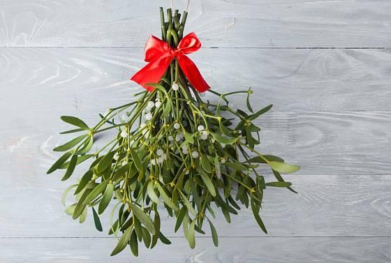 Při vánoční výzdobě nesmíme zapomenout na jmelí.