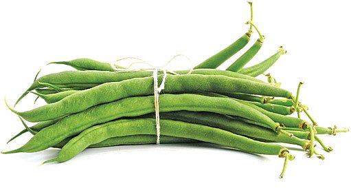 zavařování fazolek