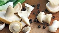 čirůvka májovka v kuchyni nahradí hříbky
