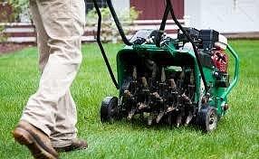 Polední sekání trávníku by mělo proběhnout do konce října.