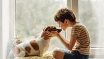 Mezi dítětem a psem často vzniká velmi silné pouto.