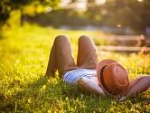 Vyžeňte klíšťata ze zahrady a užijte si léto bez nepříjemných parazitů.